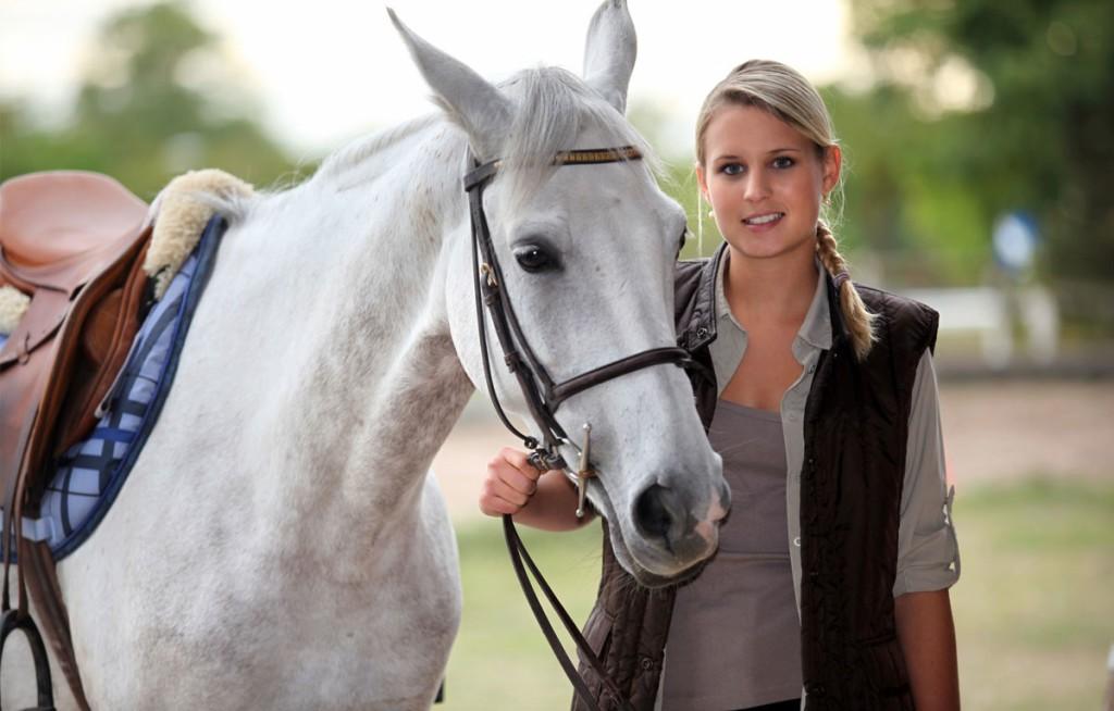 horse-011-1024x654