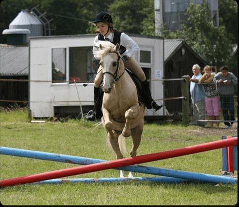 horsepo