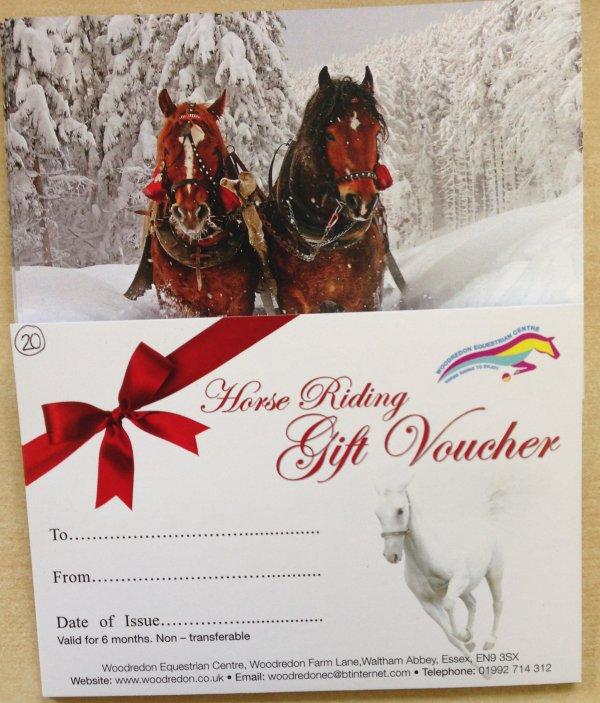 Aurora Balloon Company Hot Air Balloon Rides Over Icelandic Horse - Horseback riding lesson gift certificate template